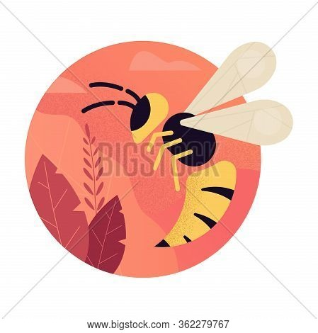 Hornet Wasp Vector Flat Concept. Insect Wasp