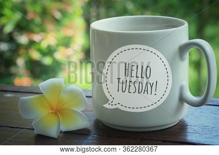 Tuesday Greeting Welcoming Another New Day - Hello Tuesday On A White Cup Of Coffee Or Tea With A Fl