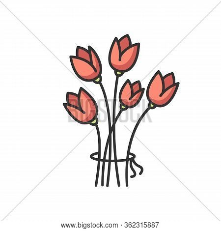 Flowers Rgb Color Icon. Bouquet For Greeting. Romantic Present. Gift For Valentine. Blooming Tulips.