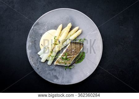 Fried gourmet skrei cod fish filet with white asparagus and sauce hollandaise offered as top view on a modern design plate with copy space