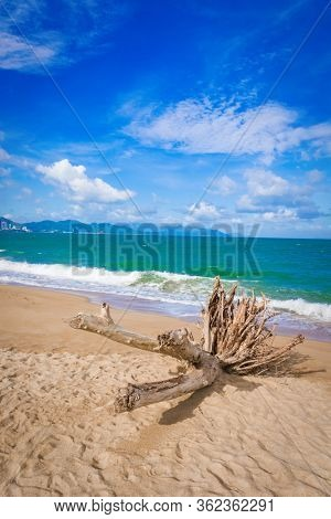 Scenic view of Nha Trang beach at sunny day. Beautiful tropical landscape. Snag on the foreground