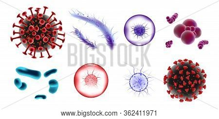 Set Of Microscopic 3d Bacteria And Viruses. Microbiology Vector Bacterium And Bifidobacterium Germ I