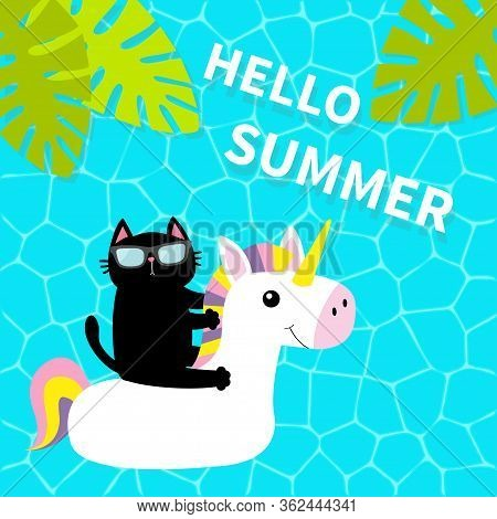 Black Cat Floating On White Unicorn Pool Float Water Circle. Swimming Pool Water. Hello Summer. Top