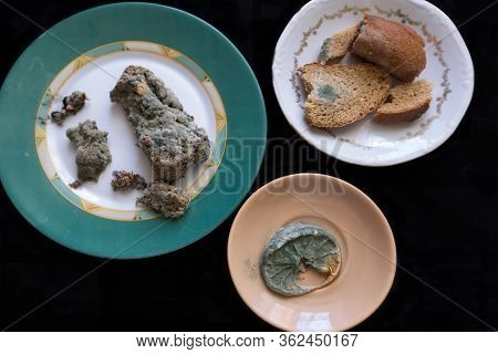 Rotten Bread And Lemon On Plates. Mildew Inedible Food. Bread And Lemon With Blue Mold. Top View.