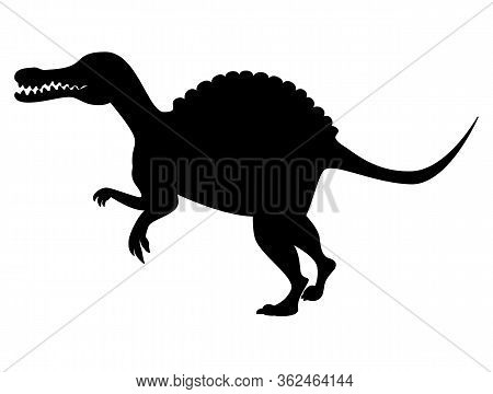 Spinosaurus Silhouette Isolated On White Background. Vector Illustration.