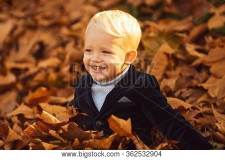 Happy Child Playing With Fallen Leaves In Autumn Park. Little Boy Have Fun Playing With Fallen Golde