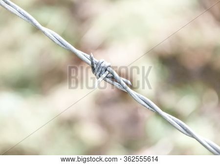 Barbed Wire - Close-up View Barbed Wire Against A Blurred Nature