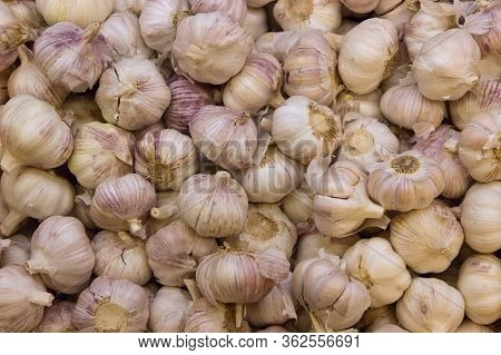 A Lot Of Garlic In A Heap At The Supermarket Counter, Market