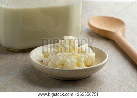 Organic probiotic milk kefir grains in front of a glass jar Kefir milk