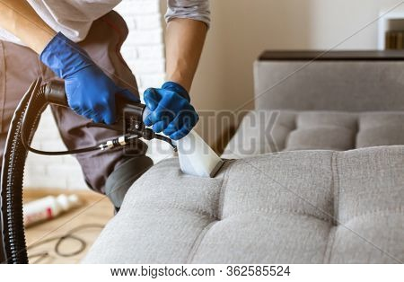 Man Dry Cleaners Employee Hand In Protective Rubber Glove Cleaning Sofa With Professionally Extracti