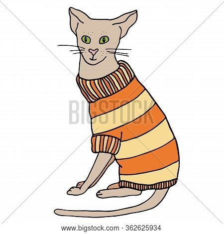 Outline Cat Sweater Vector Photo Free Trial Bigstock