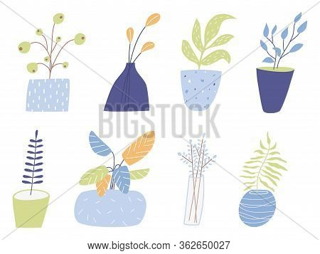 Potted Houseplants Flat Vector Illustration. Flowers For Home Decoration Isolated On White Backgroun
