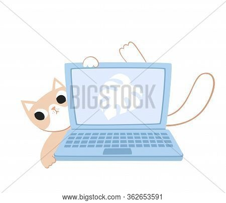 Vector Sat Of Cut Cats Lying On Laptop On White.