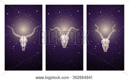 Vector Set Of Three Illustrations With Silhouettes Skulls Antelopes And Goat And Moose Against The B