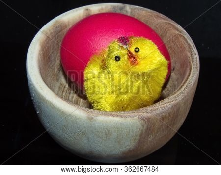 Red Easter Egg And A Cute Little Yellow Chick. Colorful Easter Eggs - Part Of The Passover Meal. Eas