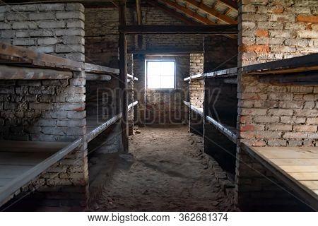 Birkenau, Poland - December 15, 2019: Wooden Bunk Beds In A Barrack In Auschwitz - Birkenau Concentr