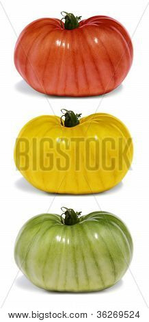 Stop and Go Tomato