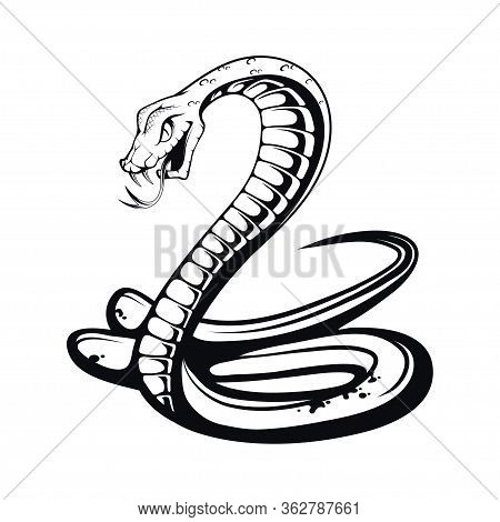 Sketch Black Mamba. Teeth Bared, Ready To Strike. Black Snake. Poisonous Snake Common In Africa. Bla