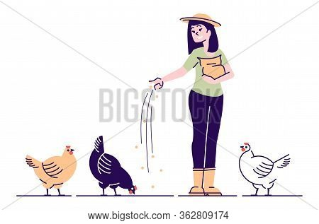 Female Farmer Feeding Chickens Flat Vector Character. Poultry Backyard Farm Cartoon Concept With Out