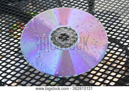 Wet Cd Disc. Wet Dvd Disc. Raindrops On Disc.