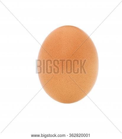Chicken Egg Isolated On White Background. Organic Egg Isolated.