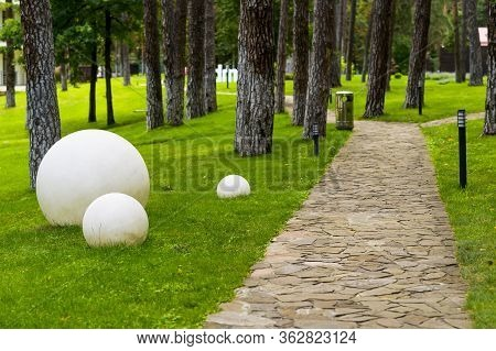 Stone Paths Among Trees Landscaped Using Artificial Light Fixtures