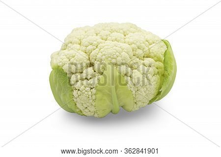 One Head Fresh Organic White Cauliflower On White Isolated Background With Clipping Path. Cauliflowe