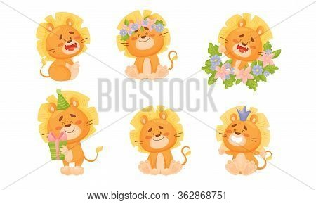 Cartoon Lion Cub Sitting And Smiling Showing Sharp White Teeth Vector Set