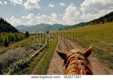 Riding Horse Hiking Summer In Mountain Trail