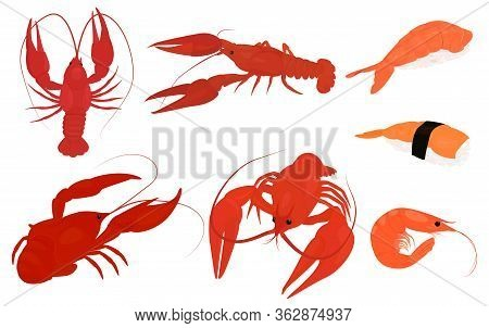 Set Of Boiled Red Lobster And Shrimp. Crayfish Vector Silhouette Icons. Set Of Sea Creatures Icons.