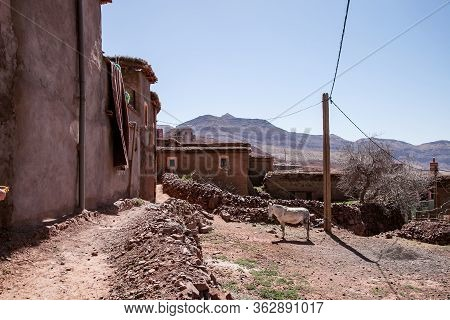 The Walls Of The Houses Of Berber Huts, The Walls Of The Medina Of The Arab Peoples