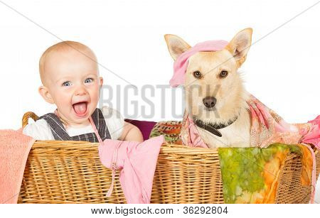 Baby And Dog In The Laundry Basket
