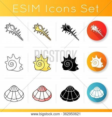 Various Seashells Icons Set. Linear, Black And Rgb Color Styles. Sea Shells Collection Hobby, Concho