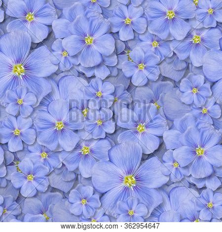 Textile Seamless Pattern With Blue Flowers. Decorative Design Element