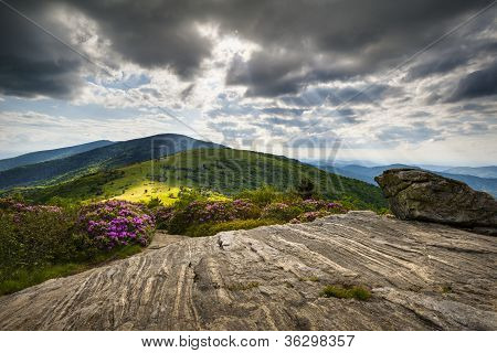 Roan Mountain Appalachian Trail Blue Ridge Mountains Landscape along NC and TN border in Western North Carolina poster