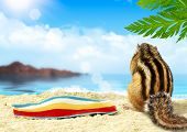 Chipmunk sunbathes on the beach vacation concept poster