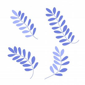 Cute Stylized Violet Fern Leaves Set. Hand Drawn Simple Flat Leafy Plants For The Design Of Cards, I