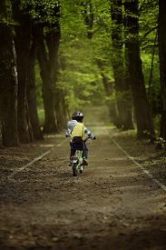 Little Boy Rides A Bicycle In The Park. Summer Sunny Day. Tall Trees Along The Walkway. The Boy In A
