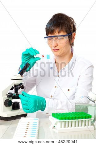 Scientist Works In The Laboratory