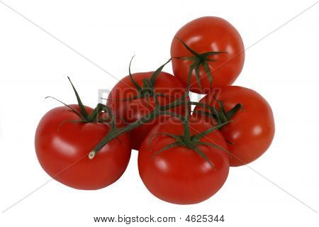 Five Tomatos With Twig