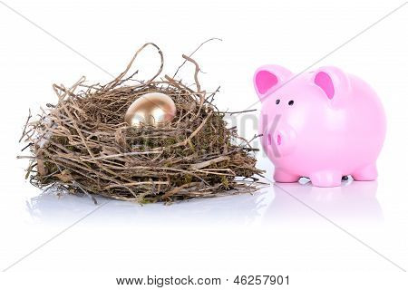 Piggy Golden Egg