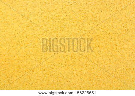 yellow porous bast whisp surface background