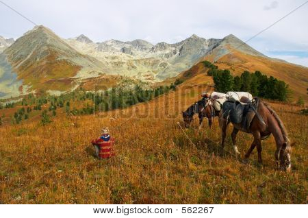 Mountains, Girl And Two Horses.