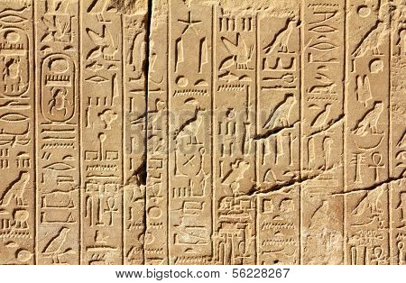 ancient egypt hieroglyphics on wall in karnak temple