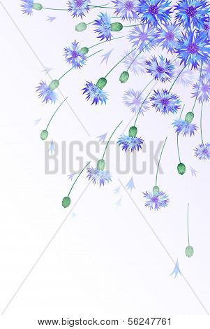Vertical vector card with bluebottles