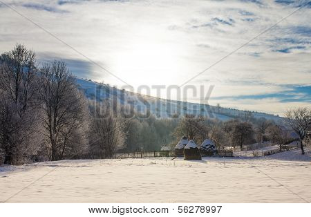 Wintre landscape