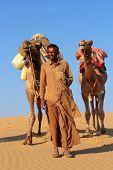 cameleer in desert - camels caravan on sand dune poster