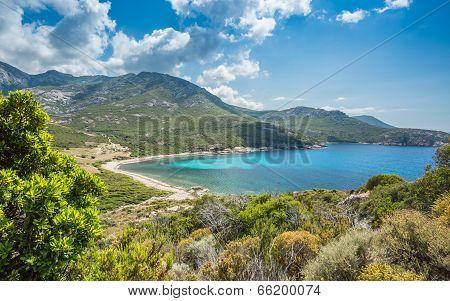Baie De Nichiareto On West Coast Of Corsica