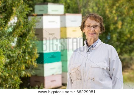 poster of Portrait of confident female beekeeper standing at apiary