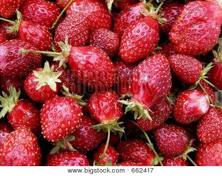 Strawberries Close-up